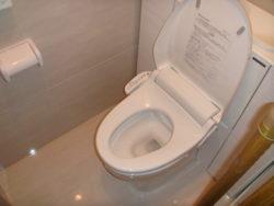 タカラスタンダードチィモニシステムトイレ